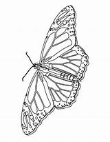 Coloring Pages Butterfly Printable Butterflies Monarch Colour Bestcoloringpagesforkids Bookmark Butterly Flower Land Mycoloringland sketch template