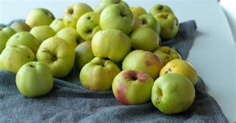 Iesaka šefpavārs Normunds Baranovskis: rudens ābolu raža ...