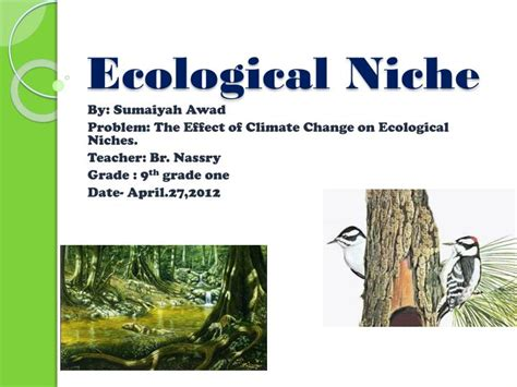 Ppt  Ecological Niche Powerpoint Presentation Id3826092