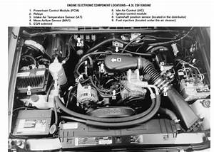 96 Gmc Jimmy Engine Diagram  U2022 Downloaddescargar Com