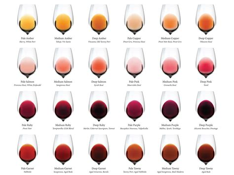 wine color complete wine color chart wine folly