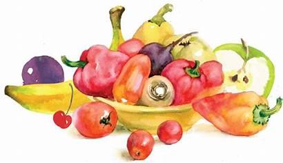 Fruits Watercolor Vegetables Veggies Rotten Spoiled Illustration