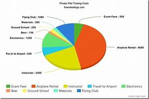 Meta Chart How Much Does It Really Cost To Get Your Pilot S