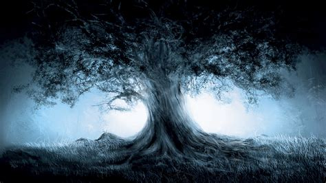 Wallpapers, Tree, Mist, Fantastic Wallpapers HD / Desktop and Mobile Backgrounds