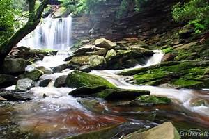 Forest waterfall wallpaper | Wallpaper Wide HD