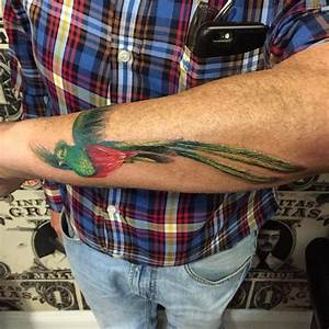 21 best My quetzal bird tattoo images on Pinterest | Mayan ...