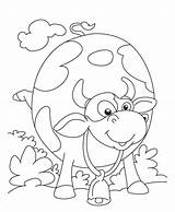 Cow Coloring Printable Colouring Spookley Drawing Pumpkin Square Purple Cows Painting Silly Farm Grinning Da Paint Clipart Icolor Animals Dairy sketch template