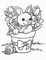 Coloring Pages Bunny Printable Popular sketch template