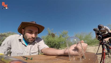 Watch Animal Expert Coyote Peterson Get Stung by the...