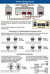 Guitar Speaker Wiring Diagram