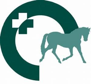 Horse Vet Logo | www.pixshark.com - Images Galleries With ...