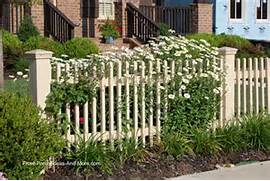 Up Daisies Are My Favorite Flower And Work Well With A Picket Fence Fence Ideas Privacy Fence Panels Vinyl Privacy Fence Home Design Privacy Fence Lattice TopperGates And FencingRenaissance Landscape Fences Around Green Grass Garden Landscape Also Various Tall Privacy