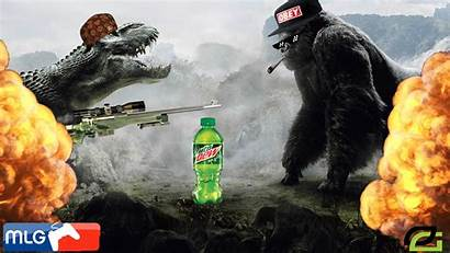 Kong King Mlg Background Rex Violent Random