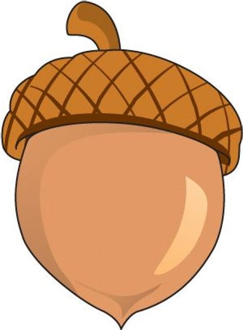 Free Clip Acorn Thanksgiving Clip 101 Clip
