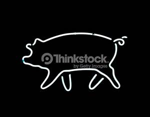 Neon Pig Sign Stock