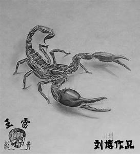 3D Scorpion Tattoos for Men | Free Tattoo Designs : 3D ...