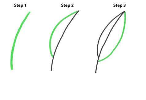 easily draw  pot leaf step  step  high