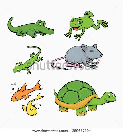 vector illustration puzzle educational stock