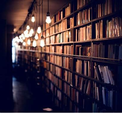 Library Books Shelves Lighting