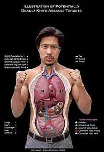 Self Defense Pressure Points Chart Knockout Pressure Point Chart Diagram Of The Most