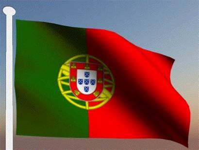 Portugal Brasil Bandeira Portuguesa Caminho Mundial Zorate