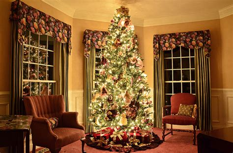 christmas tree in the living room christmas tree living room flickr photo sharing