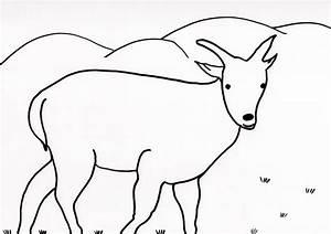 Basteln Und Handarbeiten Schafsnase