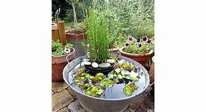 Pinterest Deco Exterieur : decorer un jardin pas cher x ~ Dode.kayakingforconservation.com Idées de Décoration