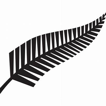 Fern Silver Clipart Zealand Vector Clipground