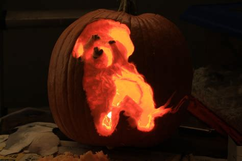 puppy pumpkin carving charlie dog pumpkin carving by skimlines on deviantart