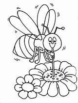 Coloring Honey Pages Bumblebee Bee Beehive Honeycomb Straw Sucking Using Drawing Bumblebees Bumble Getcolorings Printable sketch template
