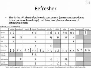 Ipa Chart  International Phonetic Alphabet Chart