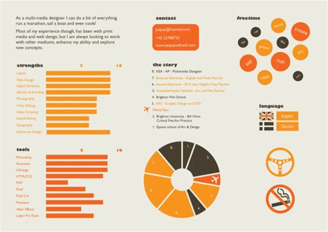make infographic visual resume or cv in hd graphic by graphication