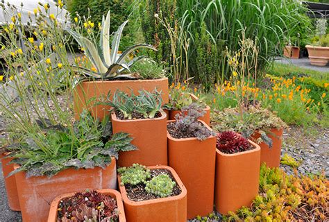 Garden Chimney by Placing Kalanchoes In Square Pots The New York Times
