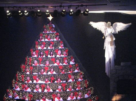 sights and travels living christmas tree