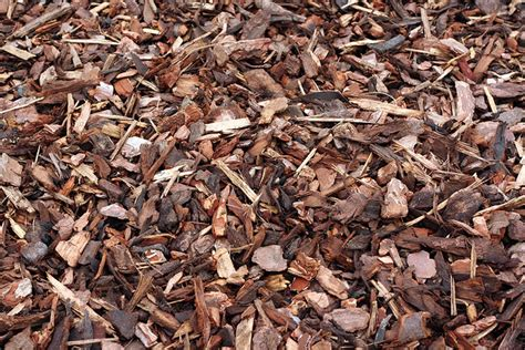 which mulch is best what is the best mulch benefits and drawbacks of various mulch materials