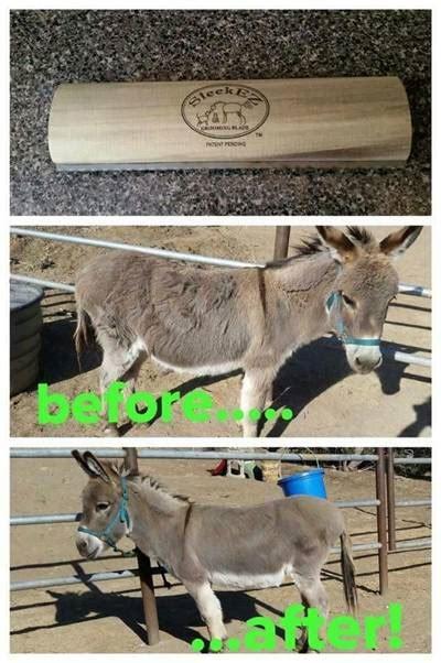 sleekez horse brush grooming tool