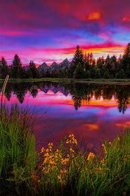 Beautiful Nature Scenes Photography