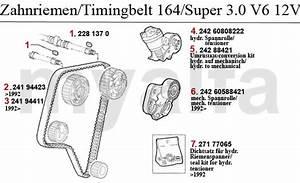 Alfa Romeo Timing Belt