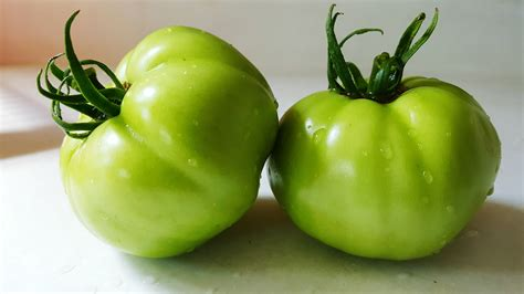 green tomatoes can i use tomatillos instead of green tomatoes