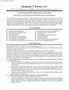 cfo resume template free samples examples format With cfo resume examples