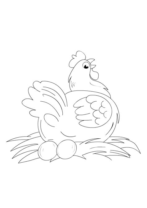 birds coloring pages  toddlers color hen