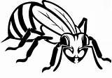 Bee Honey Coloring Coloringsky sketch template
