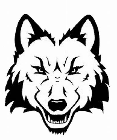 Wolf Head Drawing Clipart Face Line Outline