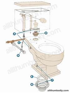 Toilet Anatomy 101when Troubleshooting A Low Toilet Flange