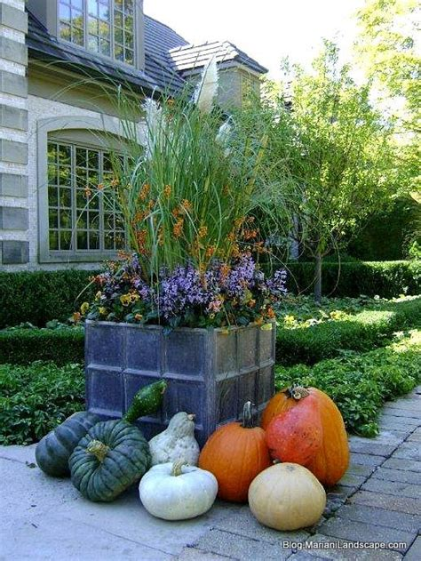 Grand Gourds And Piles Of Pumpkins  In The Garden…with
