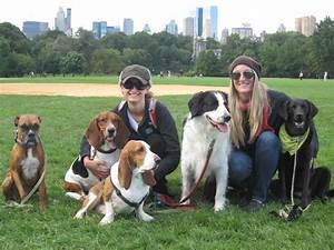 Ruffcity dog walking ruffcity dog walking is a full for Professional dog walker rates