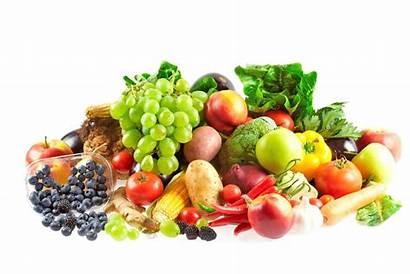Fruits Plants Vegetables Wonderopolis