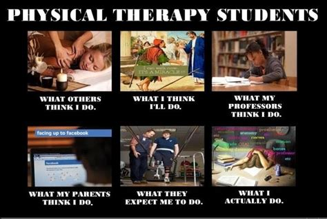 Physical Therapy Memes - pin by melissa zilka on physical therapy pinterest