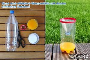 Wespenfalle Selber Bauen : hilfe gegen wespen im garten wespenfalle selbst gemacht ~ Markanthonyermac.com Haus und Dekorationen